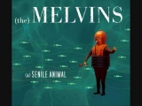 The Melvins-A History of Drunks