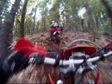 Slick Log Trail