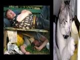 Kalibrados-O limite  o cho-(drunks slide show)