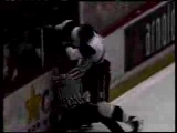 Hockey Fights and Fan Brawls
