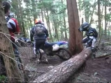 Dirt Bike Wipeouts and crashes