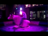 Idiot vs. Mechanical Bull