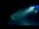 Megalodon Shark Attack  www.SteveAlten.com/meg.htm