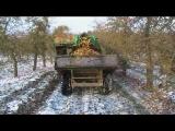 Herefordshire Cider Apple Harvest.