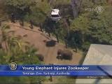 Elephant Seriously Injures Zookeeper