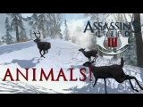 Assassin's Creed 3: ANIMALS! Turkey Attacks, Dogs, Pigs, and MORE! PAX 2012