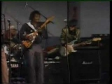 Albert Collins: I Ain't Drunk