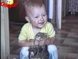 Funny Animals Caught on Tape