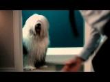 Dulux New TV Ad – Home Improvement – Boudoir